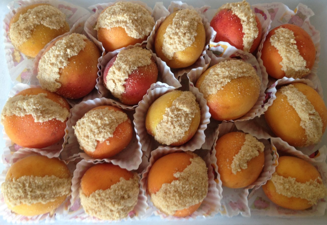 Βερίκοκα cheesecakes