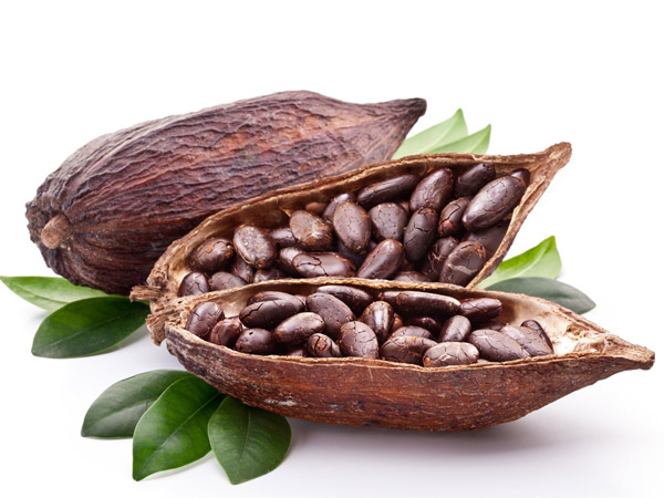 cocoa3