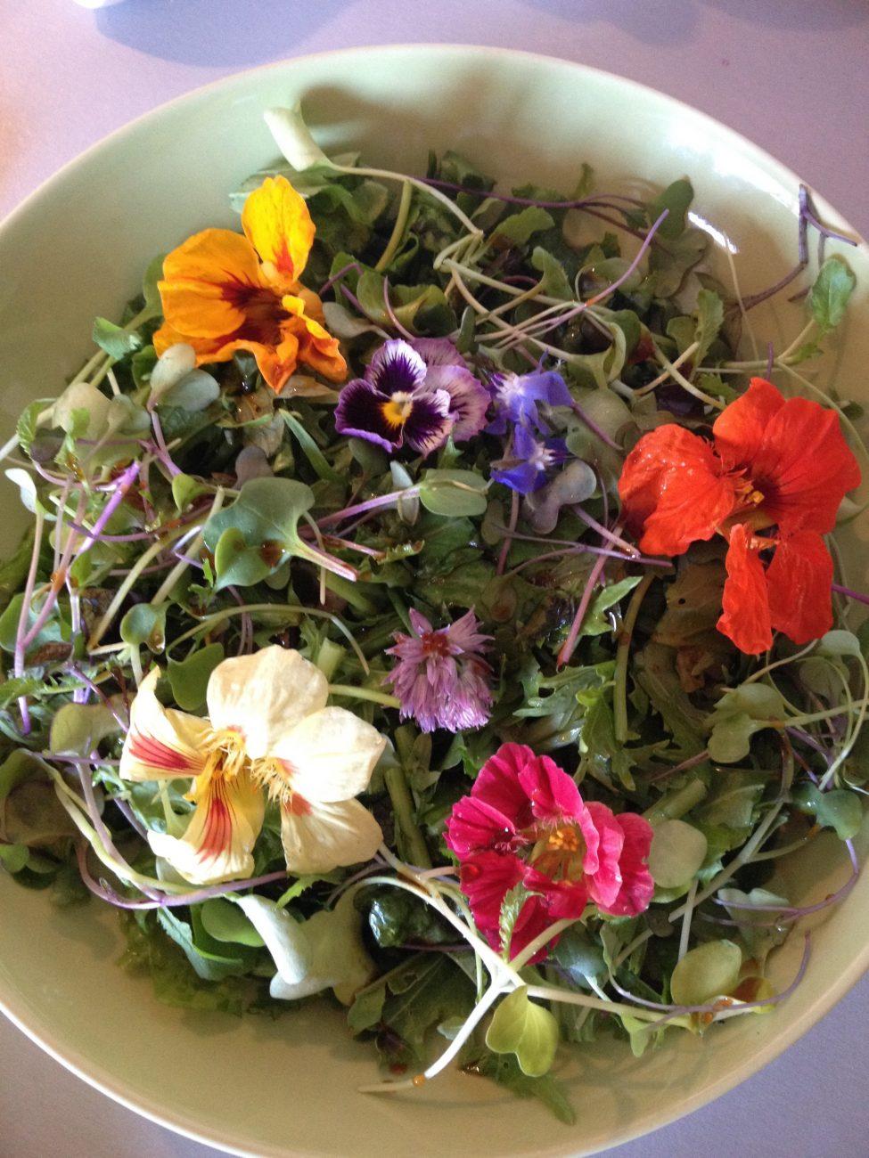 Πράσινη σαλάτα με λουλούδια και φύτρα